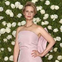 "Cynthia Nixon - ""It was so fantastic"""