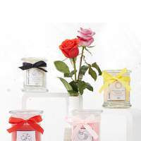 Premium Edition Scented Candles by JewelCandle