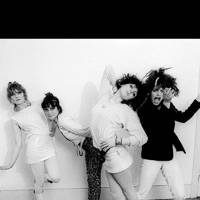 1970s – The Slits