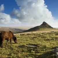Ramble round Dartmoor