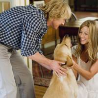 25. Marley And Me, 2008