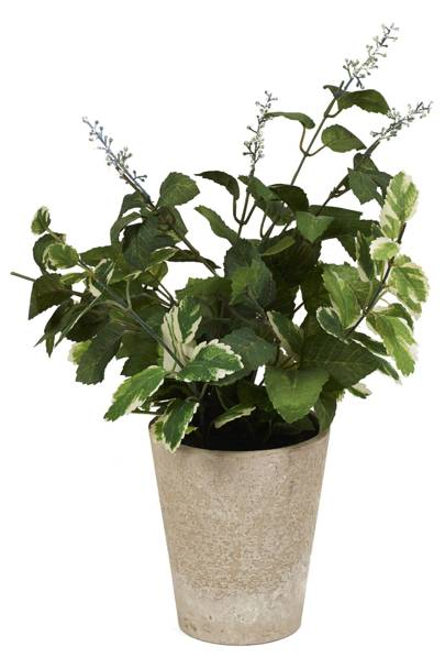 Faux flowering herb