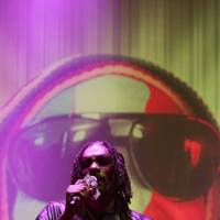 Snoop Lion at Bestival