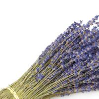 Dried flowers: the lavender