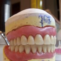 Vaginas have teeth?!?