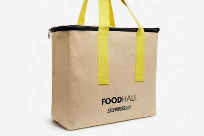 Best picnic bag